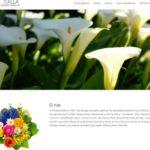 KWIACIARNIA CALLA – Strona internetowa dla kwiaciarni