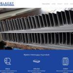 BLACHY.EG.COM.PL – Firmowa strona internetowa