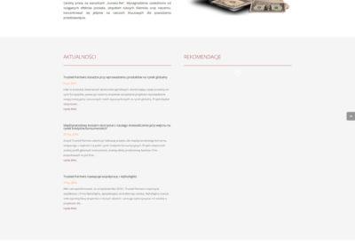 TRUSTEDPARTNERS.PL – Strona internetowa dla menagera