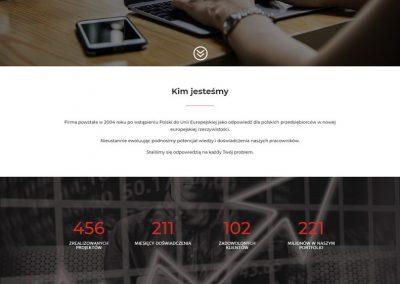 WISECONSULTING.COM.PL – Strona dla firmy doradczej